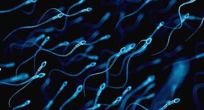 Czym są zaburzenia erekcji?